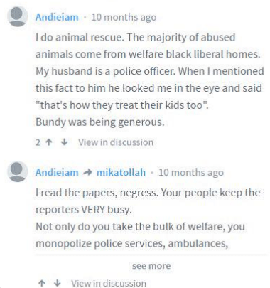 racist-comment-1