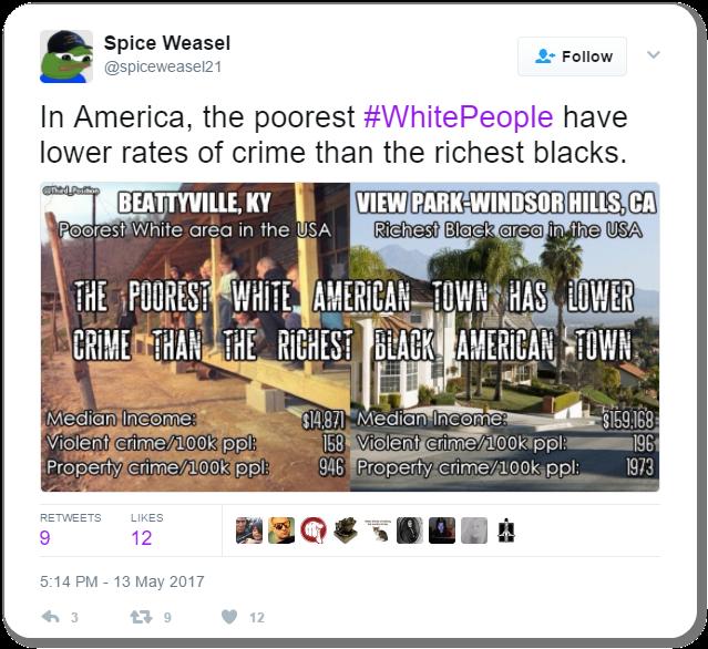 Racist Tweet 14