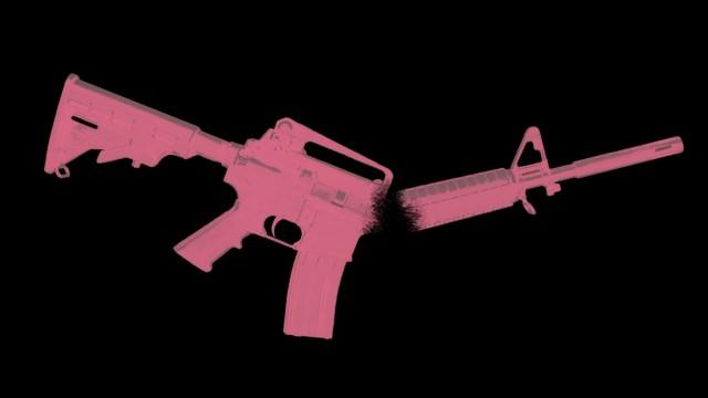 Parkland Shooting
